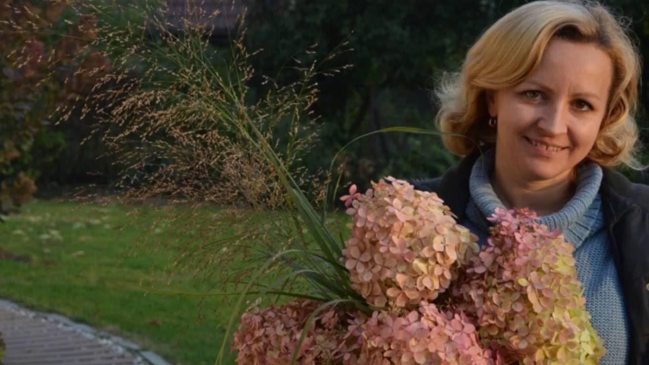 Scinanie Kwiatow Hortensji Do Bukietu Youtube