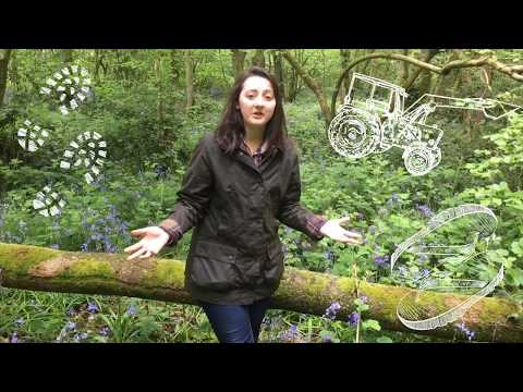 Top 10 Great Things About The Barbour Beadnell Women's Wax Jacket