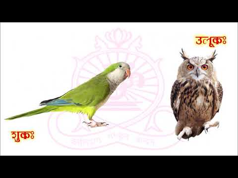 Sanskrit Lesson 5 Birds