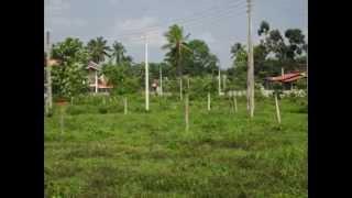 Land for sale in Kuliyapitiya (www.ADSking.lk)