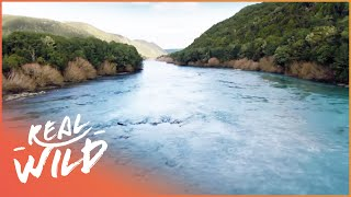 Wild River Journeys: Clutha [New Zealand Documentary] | Wild Things thumbnail
