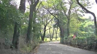 雷電山古墳への道