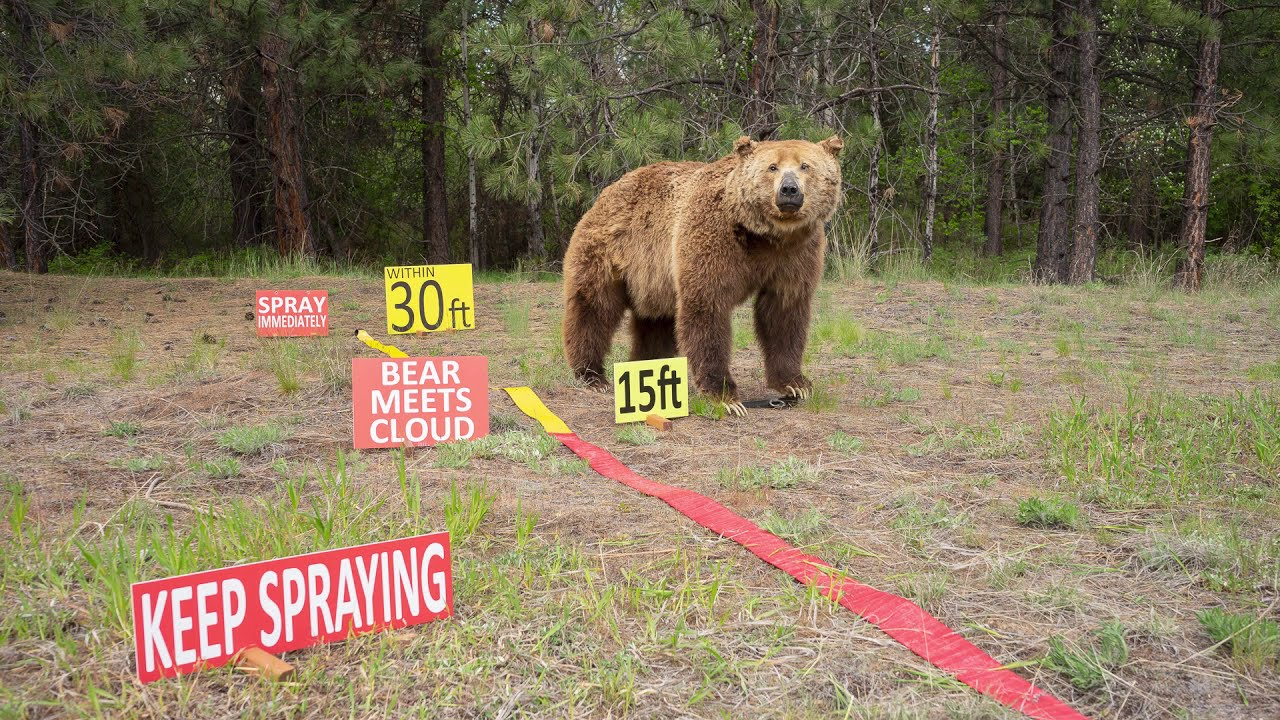 How Bear Spray Works
