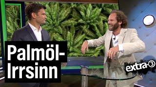 Palmöl-Irrsinn