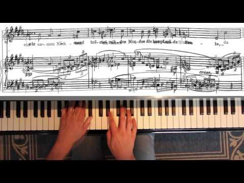 "Richard Strauss: ""Cäcilie"" op. 27 No. 2 - Sing Along Lied"