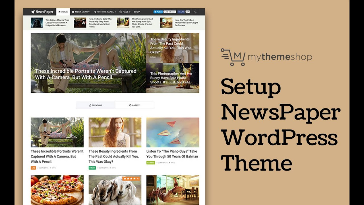 NewsPaper WordPress Theme Setup Tutorial - YouTube