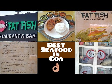 Fat Fish | Best Seafood Restaurant In Goa | Pet Puja Food And Travel