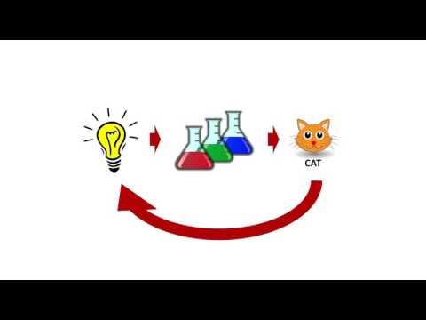 Chemistry of Relationships | Wang Jia | TEDxBocconiU