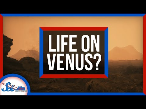 It's Probably Not Aliens on Venus… But It Could Be | SciShow News