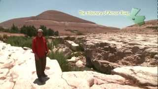 Book of Ruth Bible commentary DVD preview (English)