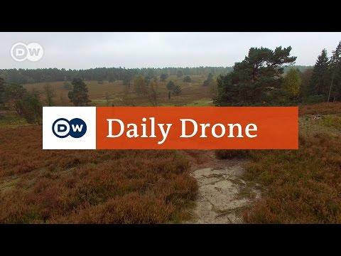 #DailyDrone: Lüneburg Heath, Büsenbachtal