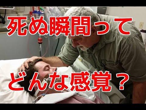 【衝撃】人は死ぬ瞬間、どんな感覚になるの? 死を恐れる理由とは? ?【ヒミツノトビラ】