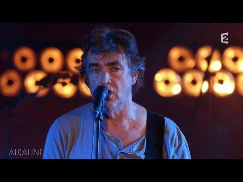 Alcaline, le Mag : Jean-Louis Murat - L'Au-Delà en live