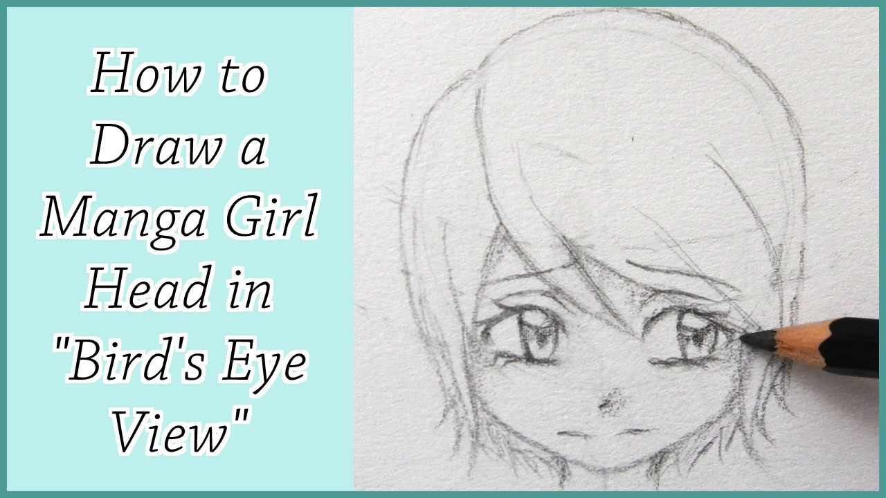 How To Draw A Manga Girl Head In Birds Eye View