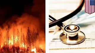 Hazardous smoke affecting California residents- TomoNews thumbnail