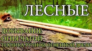 Добывание огня чагой - Техника ручной огненной дрели | Starting a Fire with Chaga - Hand Drill