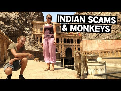 JAIPUR | GETTING SCAMMED IN INDIA | HANUMAN JI MONKEY TEMPLE | INDIA TRAVEL VLOG