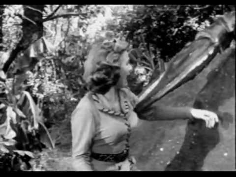 (1955) Panther Girl of the Kongo Chap 02
