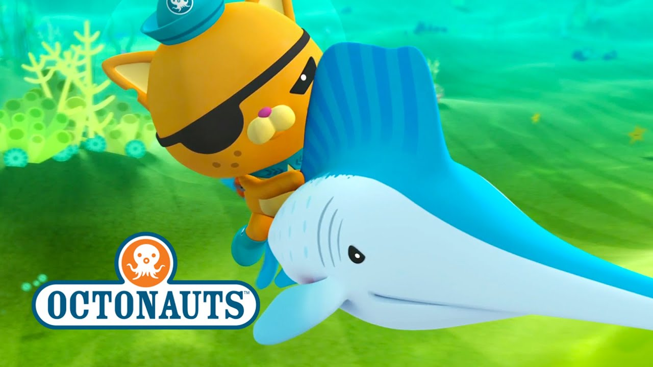 Octonauts: Sailfish Are Faster Than The Gup F - clipzui.com