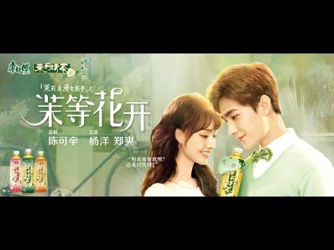 [Vietsub] Phim ngắn quảng cáo trà xanh Khang sư phụ của Dương Dương và Trịnh Sảng