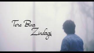 Tere Bina Zindagi Flute Cover | Varun Kumar | The Wind Stories