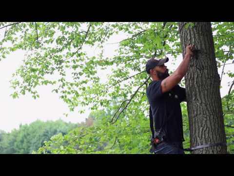 Easiest way to hang a tree stand ever