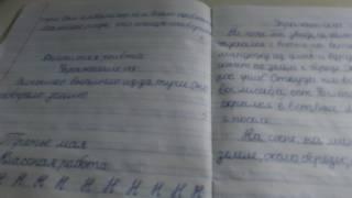 Обзор оценок в тетради