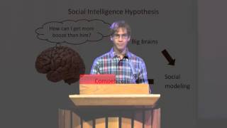 BAHEast - Robert Gooding-Townsend - Social Lubricant Intelligence Hypothesis
