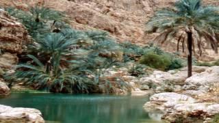 Самые красивые оазисы нашей планеты