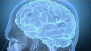 Brain Injury Information