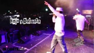 Ñejo y Dalmata Live Ft. Dj Bichote