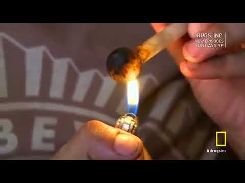 CARTEL CITY, ARIZONA | Drugs Inc | National Geographic