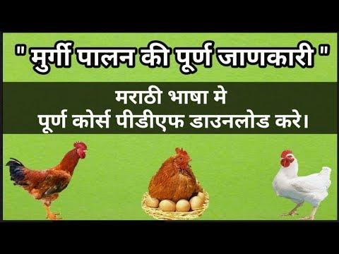 Boiler Chicken Farming Project Report Download Hindi