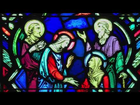 Miraculous Medal Shrine Reflections: The Visitation | December 12, 2017