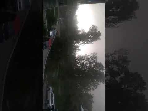 Как падали деревья во время урагана в Новокузнецке.