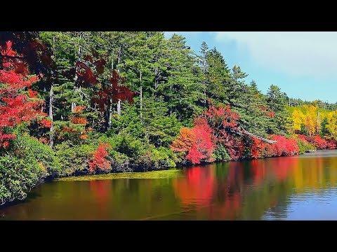 Красивая Атмосферная Инструментальная Музыка для души! Красивое видео/Beautiful instrumental music - Видео онлайн