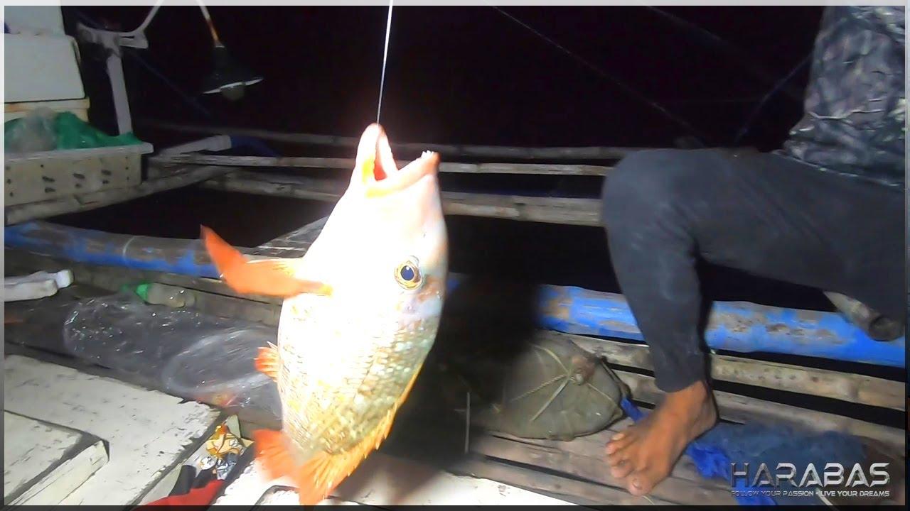 Download EP458-Part1 - Night Fishing   Mr. Bags Lang Sakalam   Occ. Mindoro
