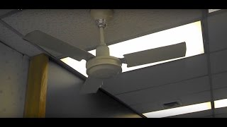 Safer (Airmaster) & Wing TAT Industrial/Commercial Ceiling Fans in a Laundromat
