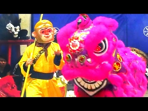 2016 Monkey and Lion Dance Performance - Boston Chinatown Main Street Community & Competition Event