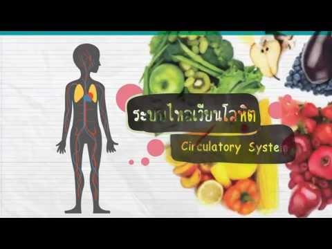 กินเป็นห่างโรค 12 ชนิด : Bye bye Diseases