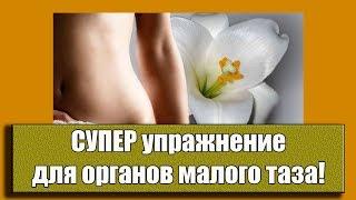 Уйдут миомы, кисты, простатит!  СУПЕР упражнение для органов малого таза
