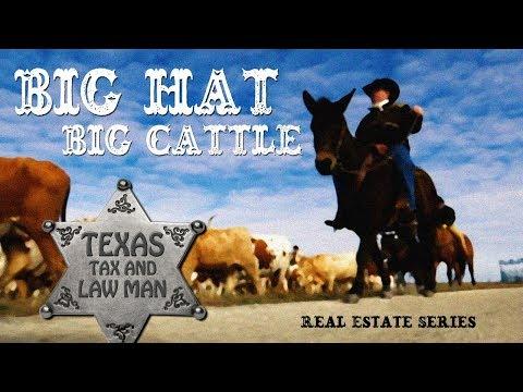 Big Hat - Big Cattle: Taxation of Rental Properties