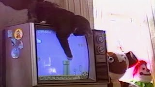 BEST of 90s ANIMALS and KIDS FAILS - 90