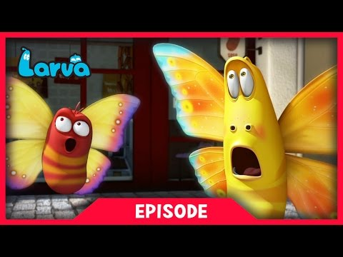 LARVA - WILD WILD WORLD | Cartoon Movie | Cartoons For Child