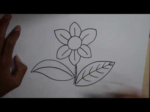 Cara Menggambar Bunga Simpel Untuk Pemula Youtube