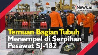 Temuan Bagian Tubuh Menempel di Serpihan Pesawat SJ-182