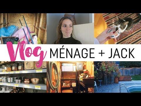 Vlog #81 - Gros ménage, courses et Jack !