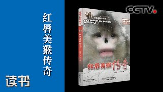 《读书》 20200616 赵序茅/李明 《红唇美猴传奇》 探寻滇金丝猴 下| CCTV科教