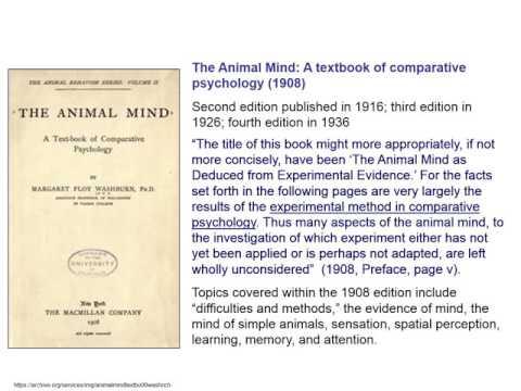 Margaret Floy Washburn & The Animal Mind