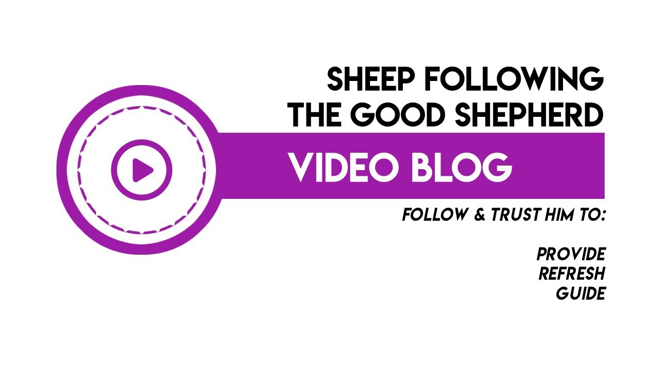 Sheep following the Good Shepherd